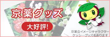 京薬グッズ